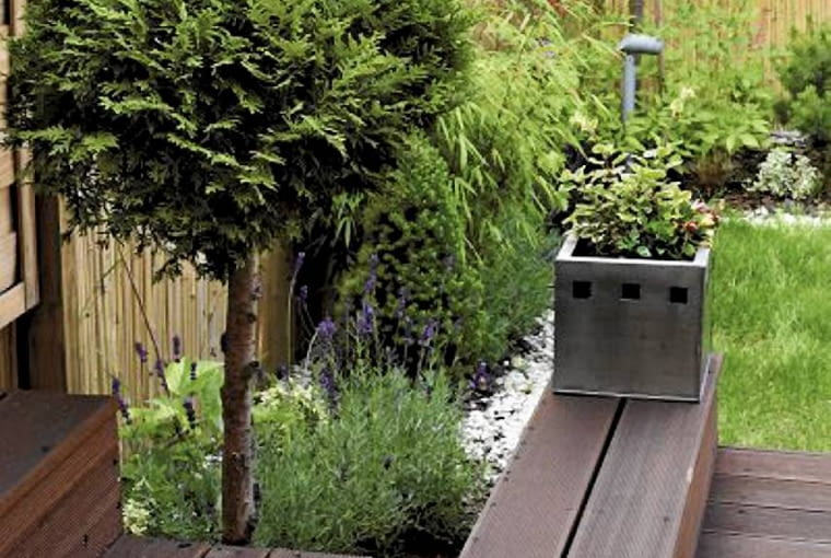Aranżacje ogrodów. Mały ogród w stylu orientalnym. Tuja strzyżona w formie drzewka pozwala oszczędzić cenne miejsce