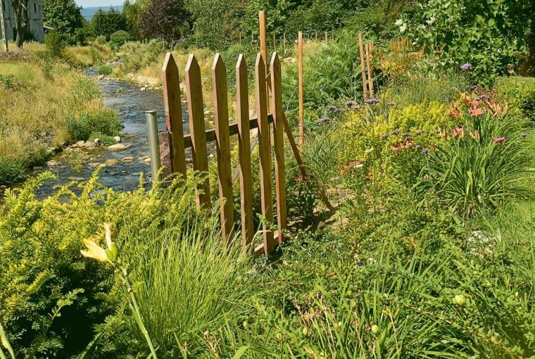 potok wilczka jest tuż za płotem, a na nadbrzeżnej rabacie rosną seslerie i liliowce.