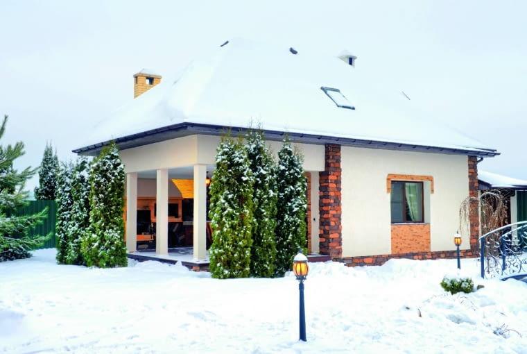 Gałęzie kolumnowych iglaków mogą się łamać pod ciężarem śniegu