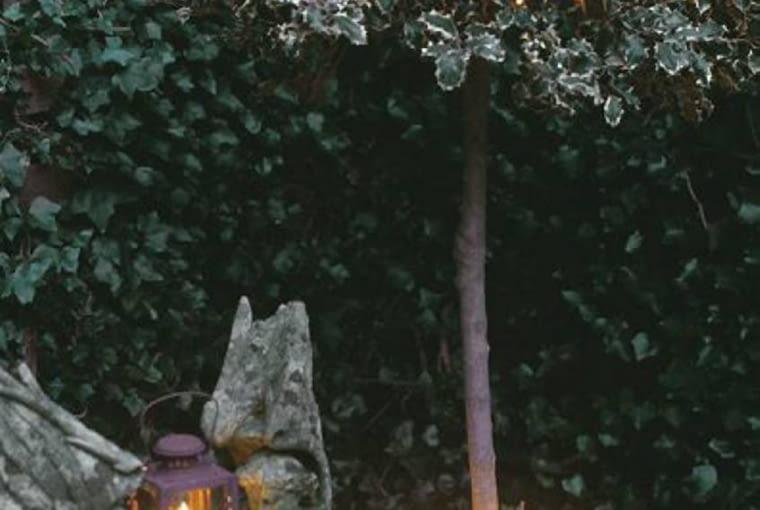 Odświętne oświetlenie ogrodu. Ostrokrzew w świetlnej kreacji