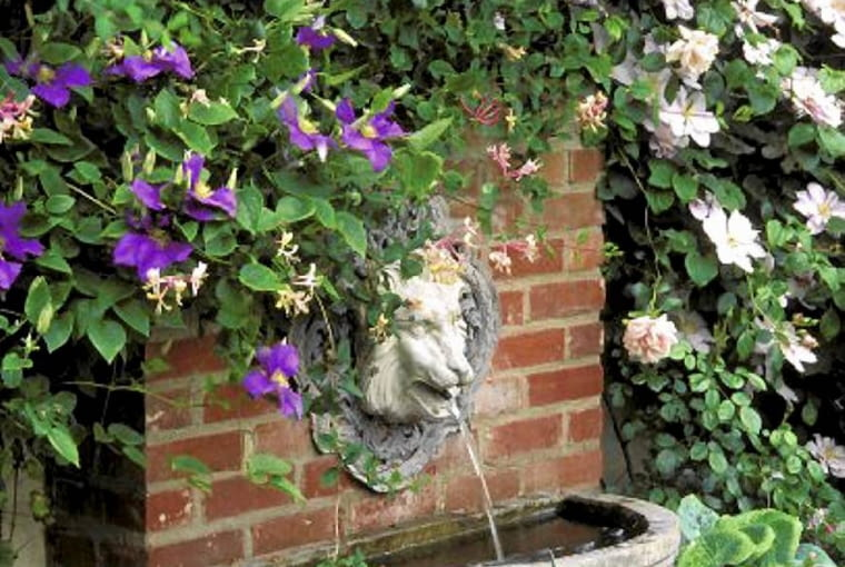 Small water feature with wall mounted lion head fountain - Sun House, Long Melford