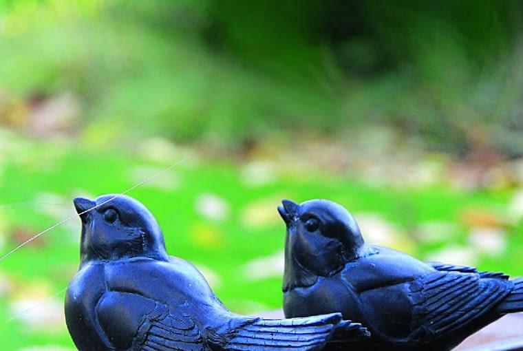 Metalowe ptaki zdobią altankę, ale w ogrodzie nie brakuje też tych prawdziwych.