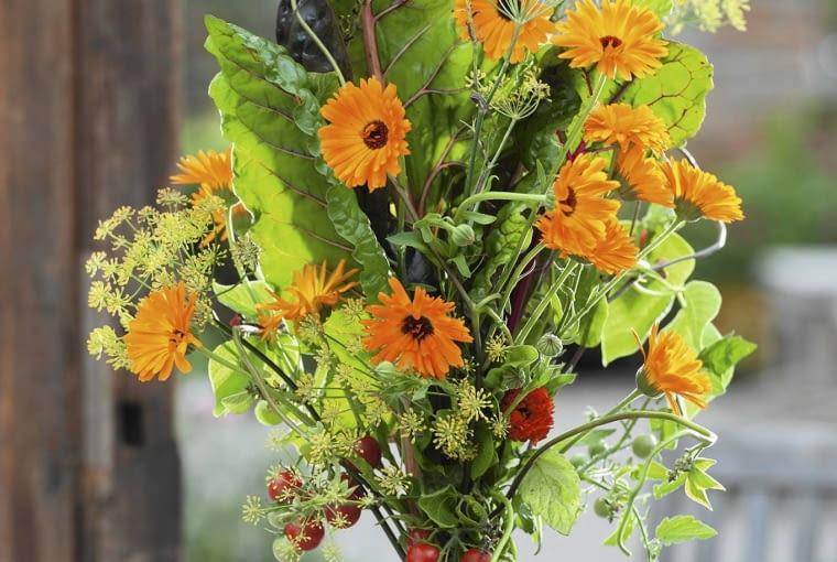 Stehstrauss : Mangold ( Beta vulgaris ), Fenchel ( Foeniculum ), Calendula ( Ringelblumen ) und Tomaten ( Lycopersicon ) auf brauner Emaille-Schale SLOWA KLUCZOWE: SOMMERBLUMEN Gem´se Kr uter essbare Bl´ten ORANGE FARBE Str u?e draussen msgnp13 000 Sommer FLORISTIK hoch