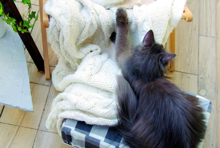 Podnóżek fotela z płyty wiórowej (z dokręconymi nóżkami) i gąbki obszytej tkaniną służy kotom za legowisko.