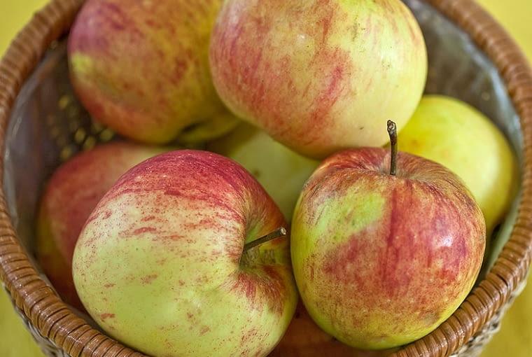 Jabłka odmiany 'James Grieve'
