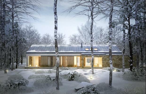 dom parterowy, projekty domów