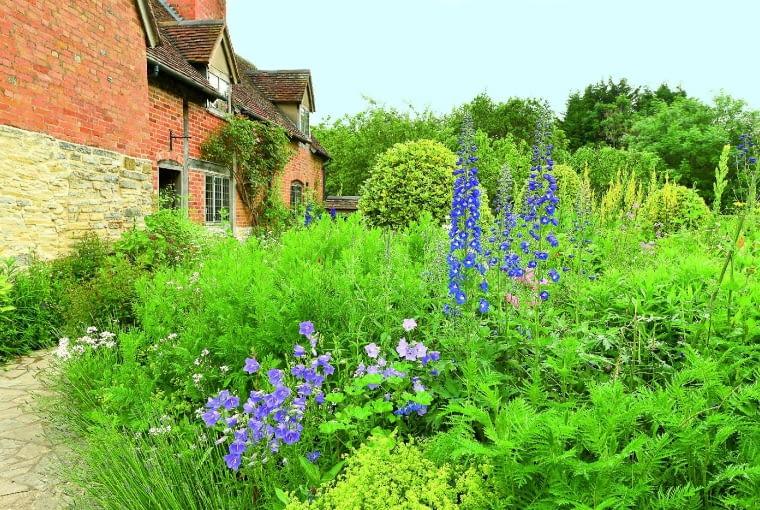 Mary Arden's Farm - ogród wokół domu zdobią błękitne dzwonki i ostróżki, złote przetaczniki i dziewanny.