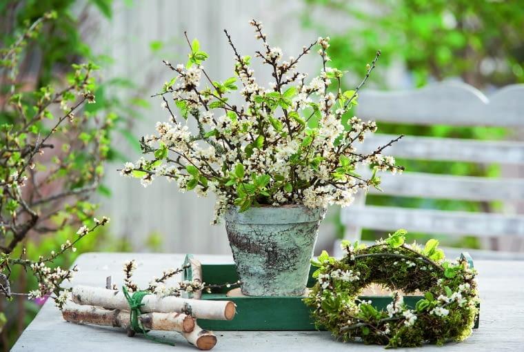eStrau und Kranz aus Prunus spinosa ( Schlehe ) und Betula ( Birke ), Birkenstmme zusammengebunden