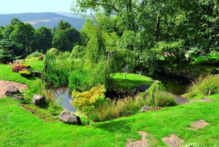 Naturalne cieki wodne tworzą siedliska dla dziesiątków roślin lubiących wilgoć.