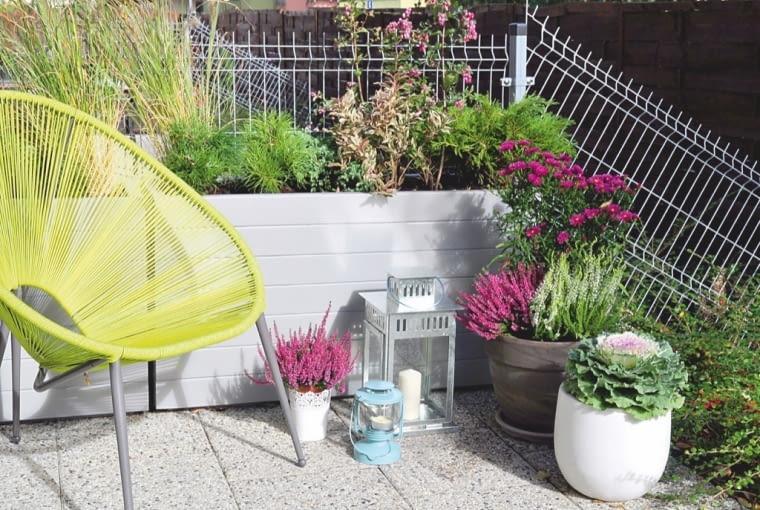 KĄCIK KAWOWY - tutaj w otoczeniu roślin można miło rozpocząć dzień.