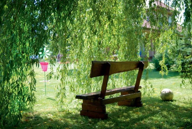 W ogrodzie jest dużo miejsca do biegania, ale nie brak też kącików relaksu, jak ten w łagodnym wierzbowym cieniu.