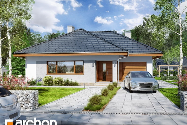 Dom w lilakach 2
