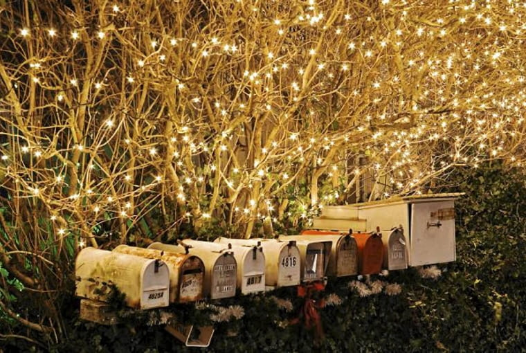 Holiday lights on Lilac (Syringa vulgaris) hedge with row of mailboxes SLOWA KLUCZOWE: Christmas decoration horizontal row mailboxes mailbox branches hedge deciduous shrubs America USA United States of America decoration lighting light Christmas Garden holiday lights Evening Night Outdoor nobody December Winter gardens