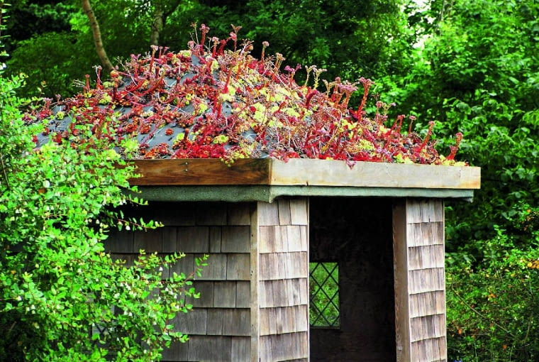 Zielony dach obrośnięty rojnikami irozchodnikami sprawił, że skromy domek zpojemnikami na odpadki stał się atrakcją ogrodu.