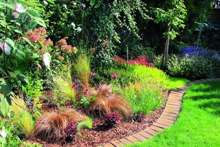 Ozdobne trawy - turzyce 'Bronco' - jesienią malują rabaty ciepłymi odcieniami żółci i brązów.