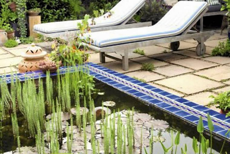 Moroccan style small urban garden in summer with blue tiled raised pool with Iris and Nymphaea. Wooden sun loungers on patio in background. SLOWA KLUCZOWE: moroccan garden summer pool iris nymphea wood wooden lounger sun patio cushion seat terrace waterlily
