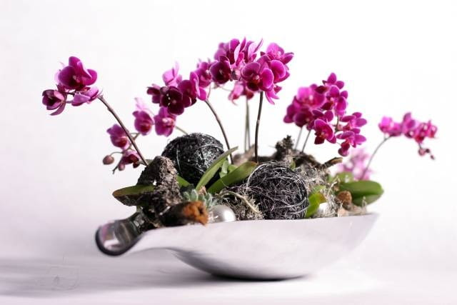 . W eleganckim naczyniu umieszczono dostojne storczyki falenopsis, a między nim rozety eszewerii, bombki oraz ozdobne kule niczym połyskujące stalowe motki