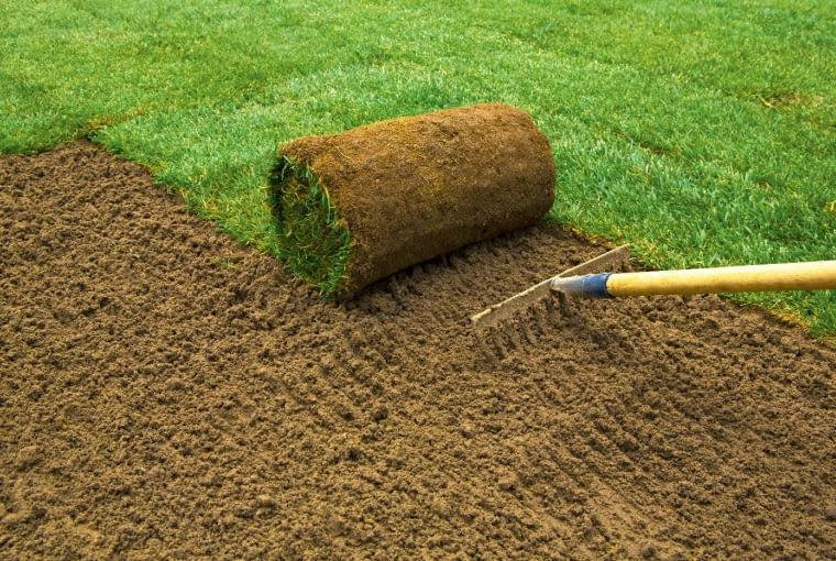 3. przed rozwinięciem każdej rolki płytko spulchniamy ziemię grabiami lub radełkiem gwiazdkowym, dzięki czemu trawa szybciej się ukorzeni. Spulchnioną ziemię podlewamy.