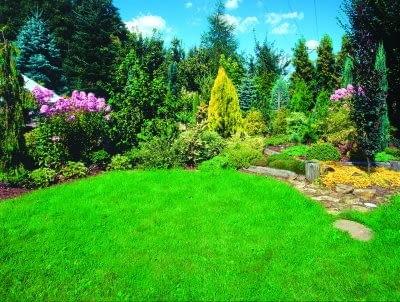 Wydaje się, że trawnik z rolki wystarczy rozwinąć jak zwykły chodnik. Tymczasem przy jego zakładaniu obowiązują określone zasady - tylko wtedy efekt jest długotrwały.
