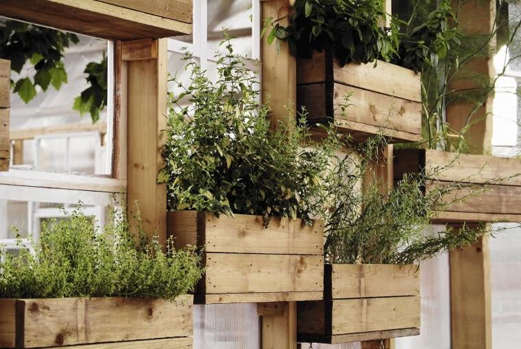 Wertykalny ogród miłośnika ziół zdobi i... pachnie!
