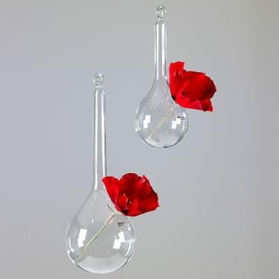 szklany wazon, wiszący wazon