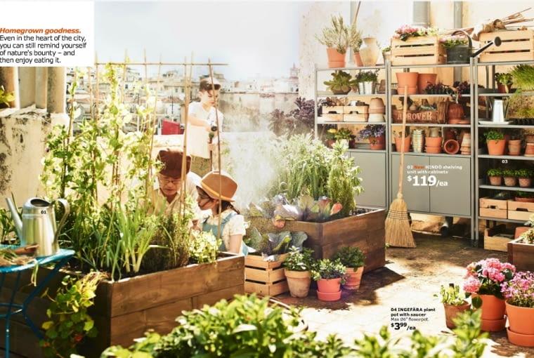 Miejscy ogrodnicy