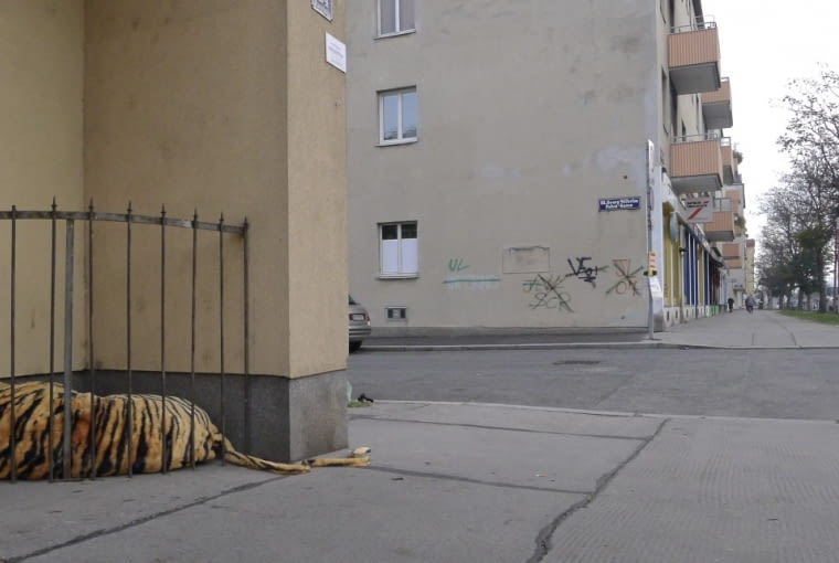 """""""Zoo"""" Wiedeń, Austria 2014"""