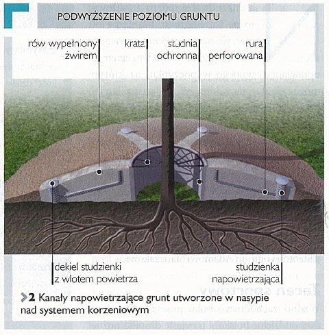 Podwyższenie poziomu gruntu