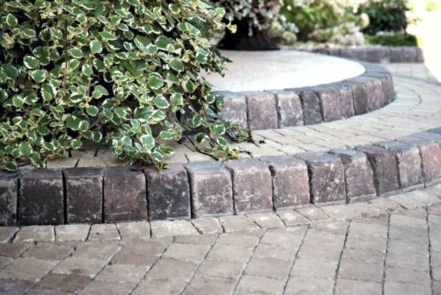 Brukowane schody nie muszą być w całości wyeksponowane; warto obsadzić je szybko rosnącymi krzewami, by ukryte w zieleni nadawały styl otoczeniu domu