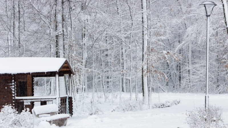 Domek z bala, drewniana ławka i pojedyncza lampa ogrodowa - zimą mamy wrażenie, że trafiliśmy prosto do Opowieści z Narnii, tak dalece wkomponowana jest w las ta działka wypoczynkowa.