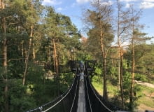 Park Dolina Wkry. Spacer w drzewach