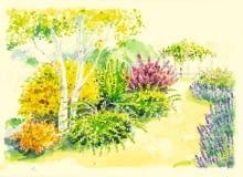 Rabata z krzewami liściastymi