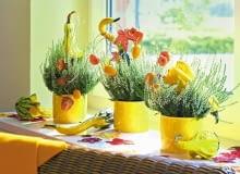 Jesienny parapet, a na nim wesoła rytmiczna kompozycja z kwitnących wrzosów , dyni ozdobnej, owoców kumkwatu i miechunki.