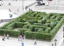 Zielony labirynt na Trafalgar Square w Londynie