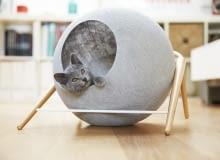 Domki dla kotów Meyou, koty, zwierzęta, domki dla kotów