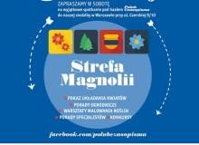 Strefa Magnolii