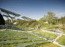 zielony dach, warszawa