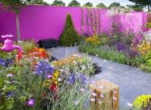 Kolorowa ściana w ogrodzie