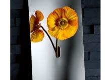 wazon ścienny, wazon stalowy