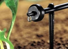 Woda powoli kapiąca z kroplowników dokładnie zwilża każdą grudkę ziemi.