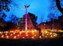Ciepłe powietrze unoszące się na zniczami w 'ogrodzie ognia' (Fire Garden) wprawia w ruch ptaka na czubku spiralnej choinki.