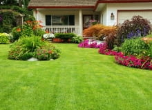 Jak stworzyć ogród prosty w utrzymaniu?