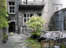 ogród pomiędzy czynszówkami