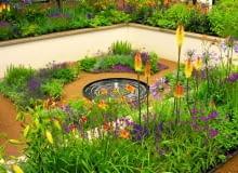 To minioczko jest głównym punktem regularnej ogrodowej kompozycji. Mimo, że skromne przyciąga wzrok
