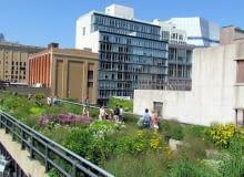 Park miejski na wiadukcie kolejki. High Line Park na Manhattanie