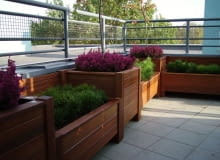 Drewniane skrzynie z roślinami. Można w nich sadzić rośliny na stałe oraz wstawiać mniejsze doniczki - wymieniane w zależności od sezonu