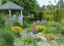 Mój ogród najlepiej opisują trzy słowa: kolorowy, różnorodny, pachnący.