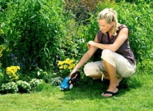Akumulatorowe nożyce ClassiCut do przycinania brzegów trawnika. Gardena, 245 zł