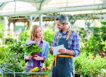 Warto robić zakupy w renomowanych sklepach i szkółkach. Zwykle sprzedawcy tam są dobrze poinformowani i mogą nam wyjaśnić wątpliwości co do nazw roślin i sposobu ich pielęgnacji.