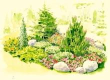 Rabata z iglakami i kwiatami